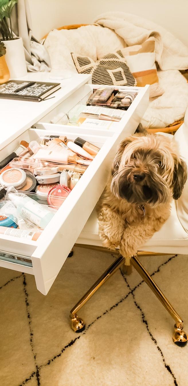 Day 3 makeup dog.jpeg